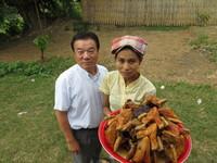ミャンマー視察 H24,9,3~7 055.jpg