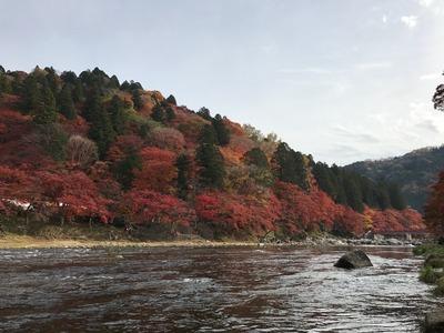香嵐渓川から.JPG